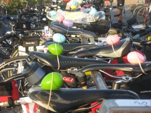 Eggs On Bikes