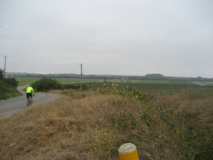 Cyclist Fields