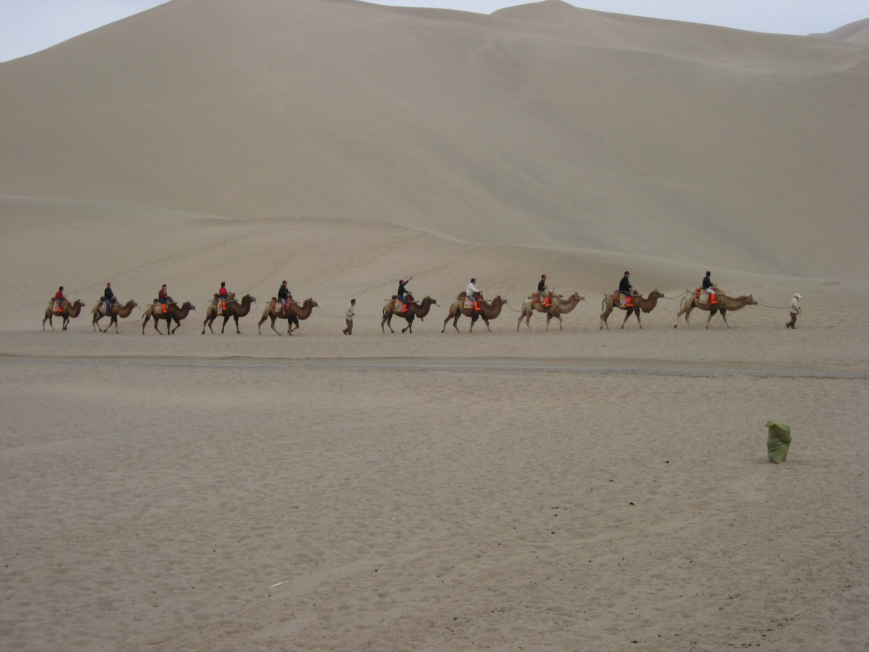 Mike and a Line of Dunhuang Camels