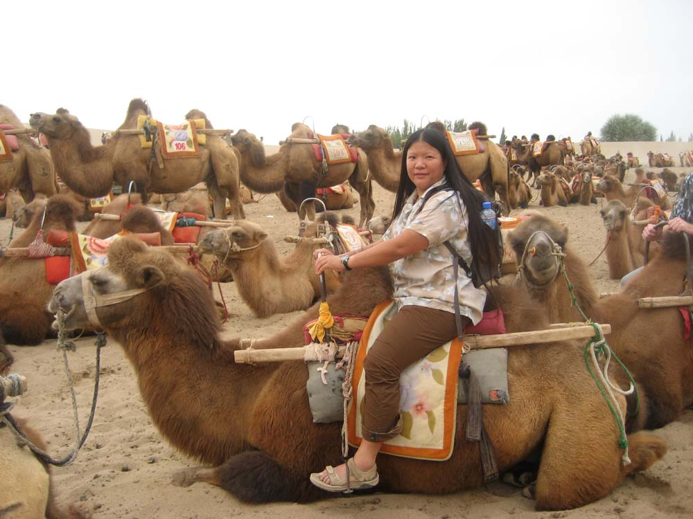 Tien Boarding A Dunhuang Camel