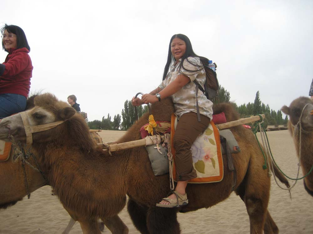 Tien on an Upright Dunhuang Camel - Fur Soft and Coarse