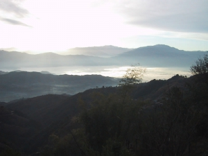 Mist In Valley Over Rewalsar