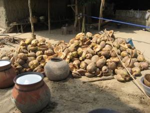 coconut cream rising to make coconut oil