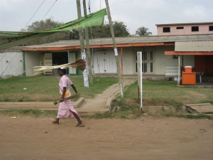 Woman carrying brooms on head