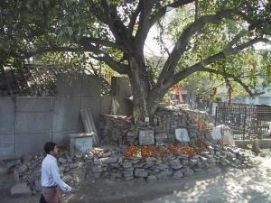 Shrine in India