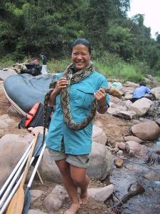 Tien Holding Snake