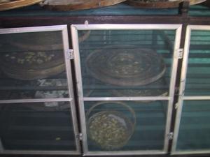Silkworm Cabinet
