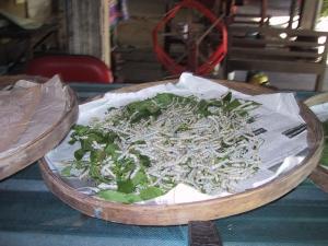 Silkworm Tray