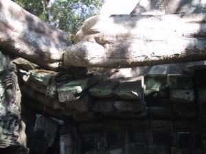 Ta Prohm Tree Buckling Stones