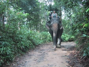 Tien on an Elephant
