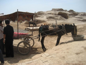 Gaochang Donkey Cart
