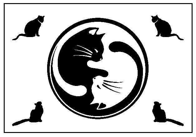 cat placemat design